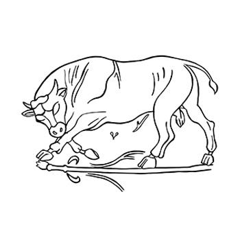 Toro Dionisiaco