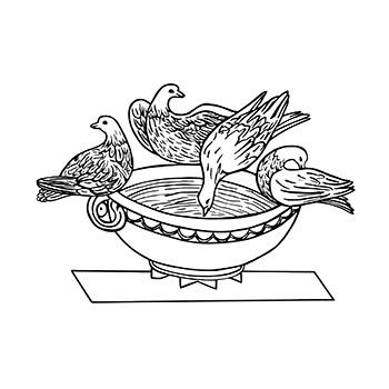 Pliny's Doves