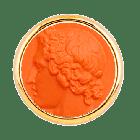 T1 Polluce Arancione