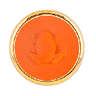 T1 Rana Arancione