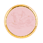 T1 Cupido Marino Rosa