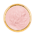 T1 Euripide Rosa