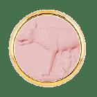 T1 Lupa Capitolina Rosa