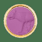 T1 Lupa Capitolina Violetto