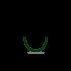 Caucciu Verde scuro